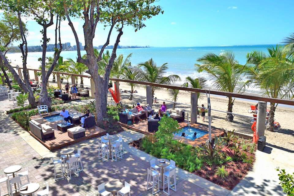 terra landscape contractors florida puerto rico